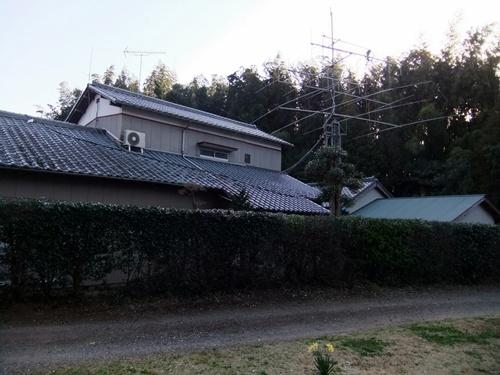 2012.4.8庭木の剪定 040 (23)