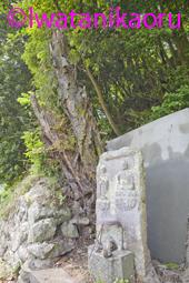 上三草の石棺仏_1