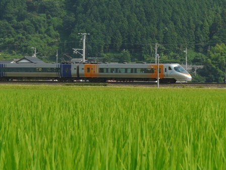 8000系特急形電車 1