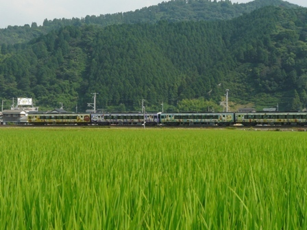 2000系特急系気動車 (アンパンマン列車) 2