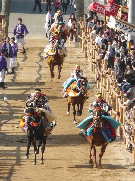 菊間祭り お供馬の走り込み 4