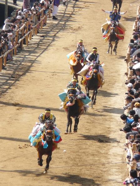 菊間祭り お供馬の走り込み 8