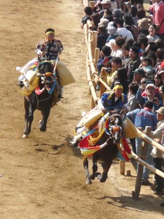 菊間祭り お供馬の走り込み 9