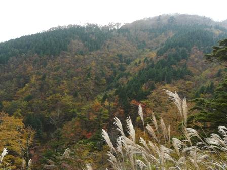 大川峰付近 2