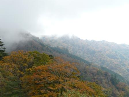 大川峰付近 3