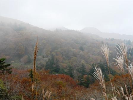 大川峰付近 6