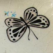 蝶のお皿06