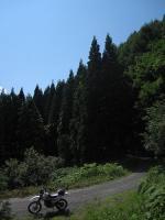 南蔵王林道