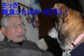 IMG_0496_1.jpg