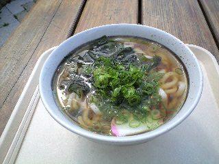 桂川PAかけうどん330円