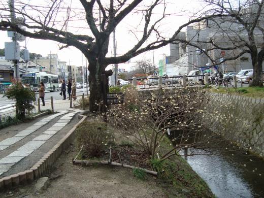 2010銀閣2月 152