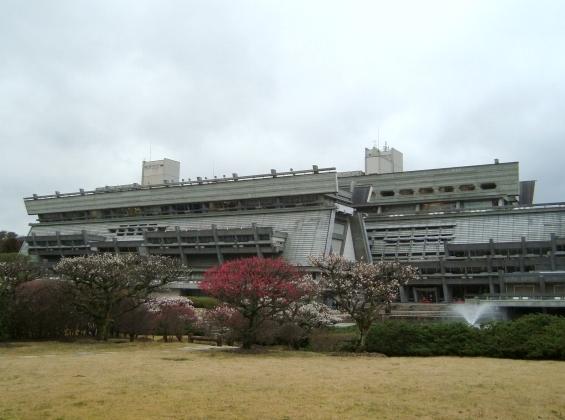国際会館梅 044