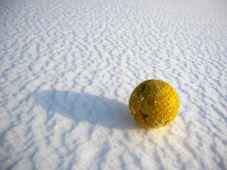 寂しげなボール