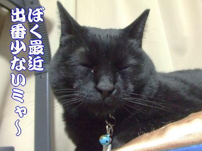 10_01_08_1.jpg