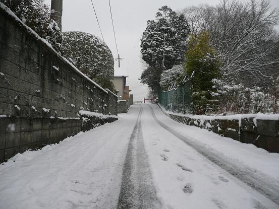 新春の雪 10,1,13 005