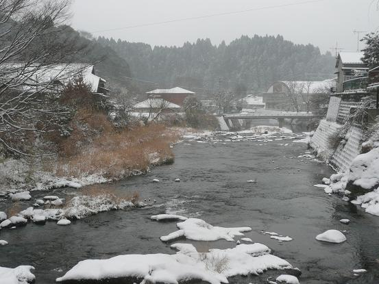 新春の雪 10,1,13 012