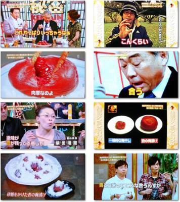 media_kenmin_show_20101218101128.jpg