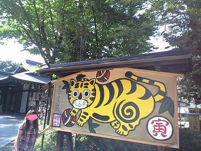 櫻木神社 巨大今年のトラ絵馬