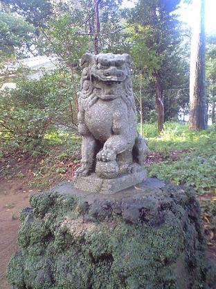 雷神社 狛犬あさん。