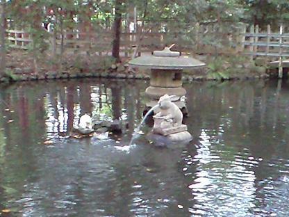 調神社 お池