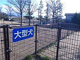20110104azusagawa.jpg