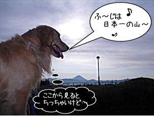 20110104danfutaba.jpg