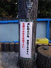 20110104futaba1.jpg