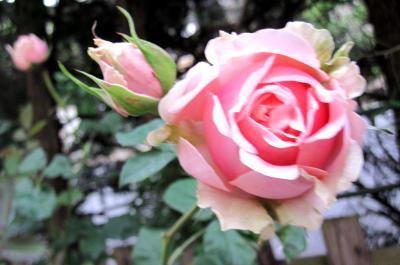 042_convert_20110603213333[1]