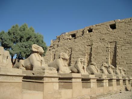 エジプト旅行:カルナック神殿 クリオスフィンクス