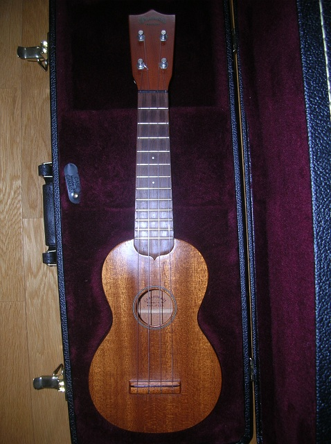 martin style 0 1981 front