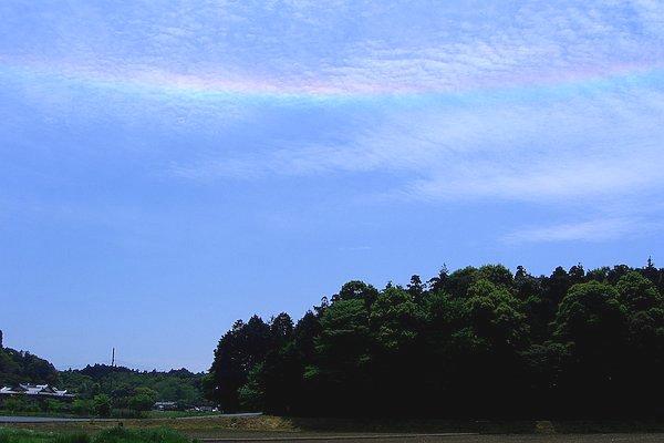 CIMG4664blog.jpg