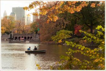 central+park+Autumn.jpg