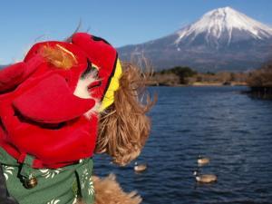 富士山とヨハン1