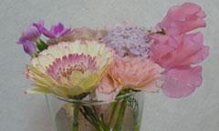 友人からのお花