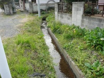岡屋敷 堀跡(2)