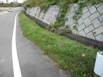 中屋敷 堀跡(1)