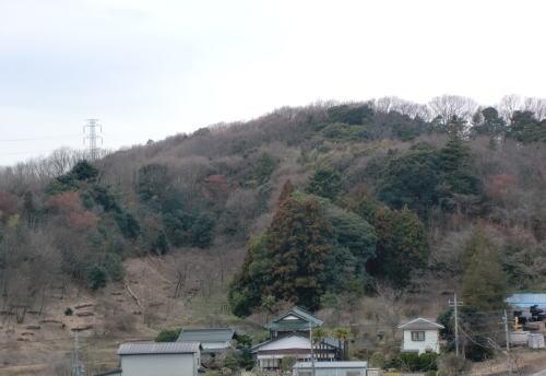 2011-4-3-1.jpg