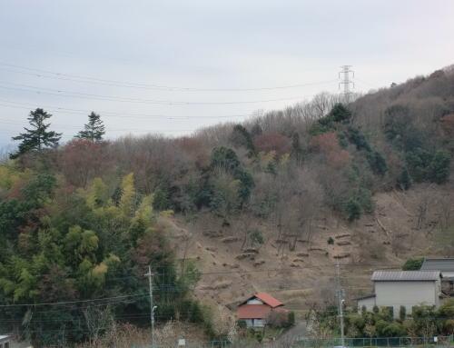 2011-4-3-2.jpg