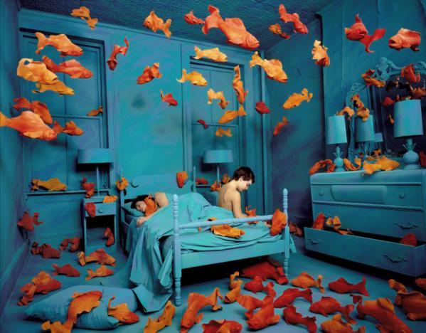 goldfish-skoglund.jpg