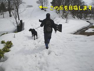 20100315_131.jpg