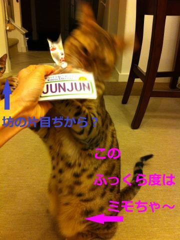B_20120412154308.jpg