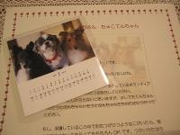 200912173.jpg