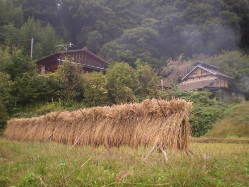 里山の秋 2