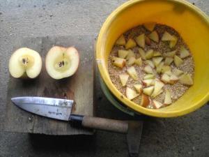 23年1月29日。今日はリンゴのご飯よー。
