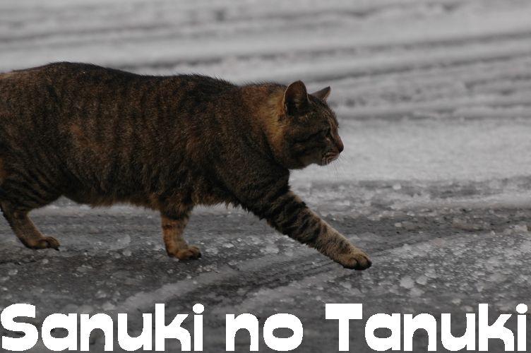 2011四国村雪2 023