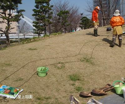 musukari1_20100319174813.jpg
