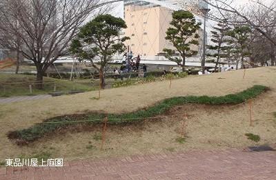 musukari4.jpg