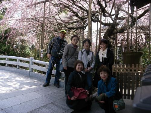 貂玖ーキ+012_convert_20120403202628