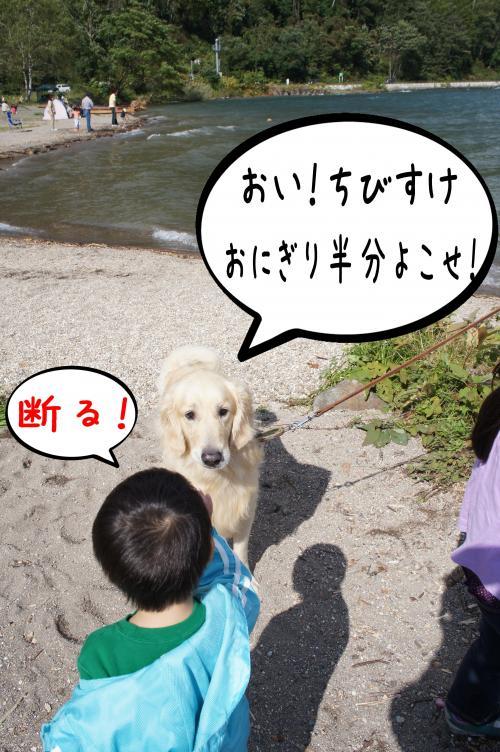 10_convert_20110927082709.jpg
