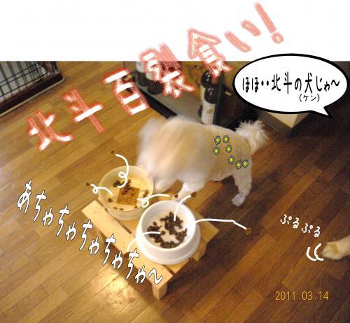 1_convert_20110415191530.jpg
